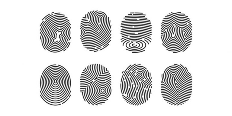 Do you know what Digital Identity is?